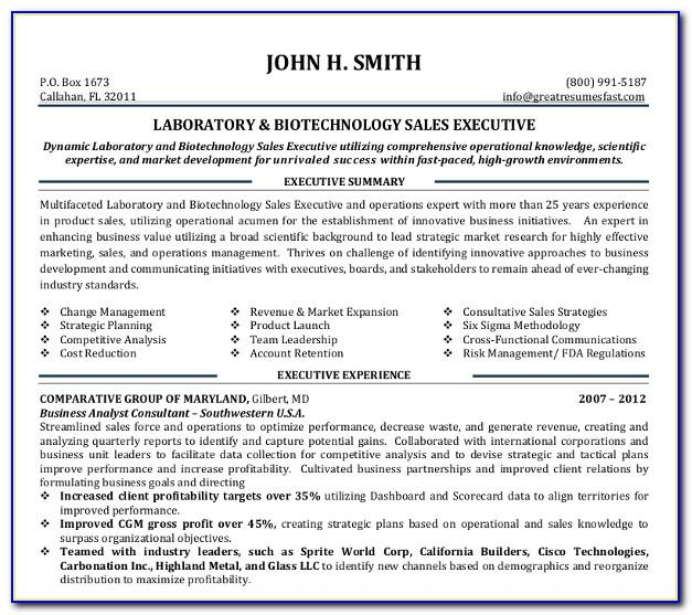 Sales Executive Resume Example