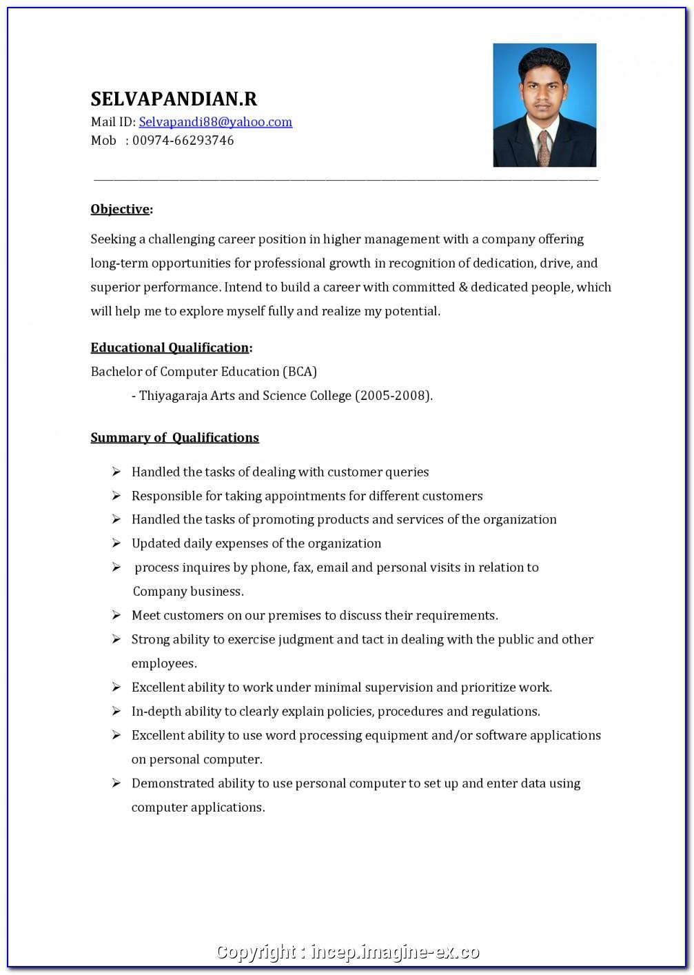 Sales Executive Resume Sample Download