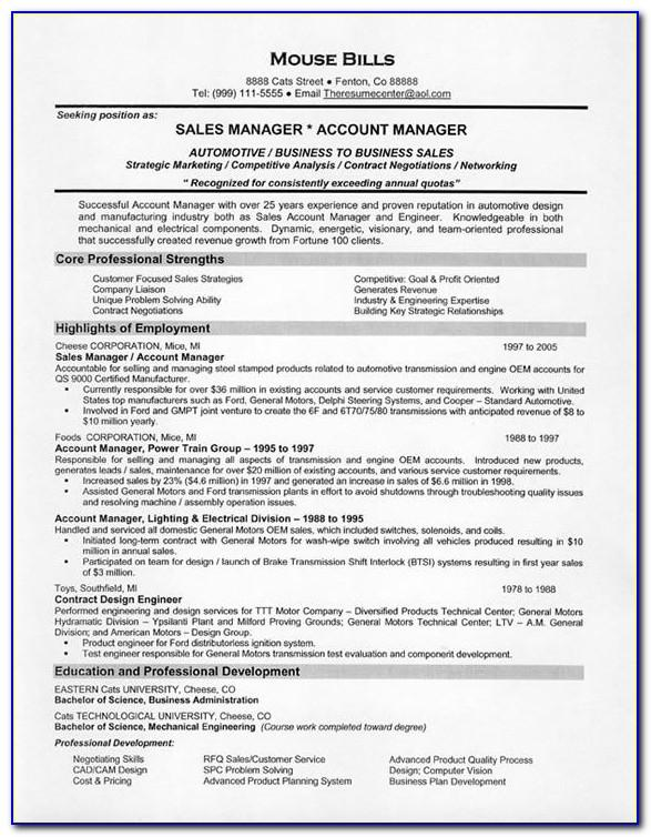 Sales Manager Resume Examples Australia