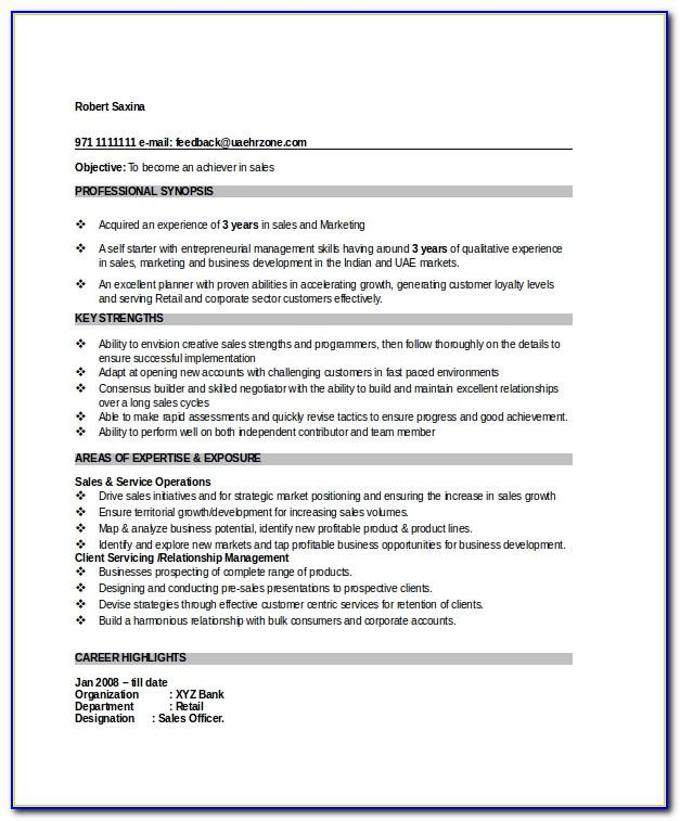 Sales Manager Resume Format Doc