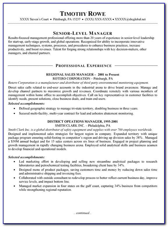 Sales Manager Resume Template Free