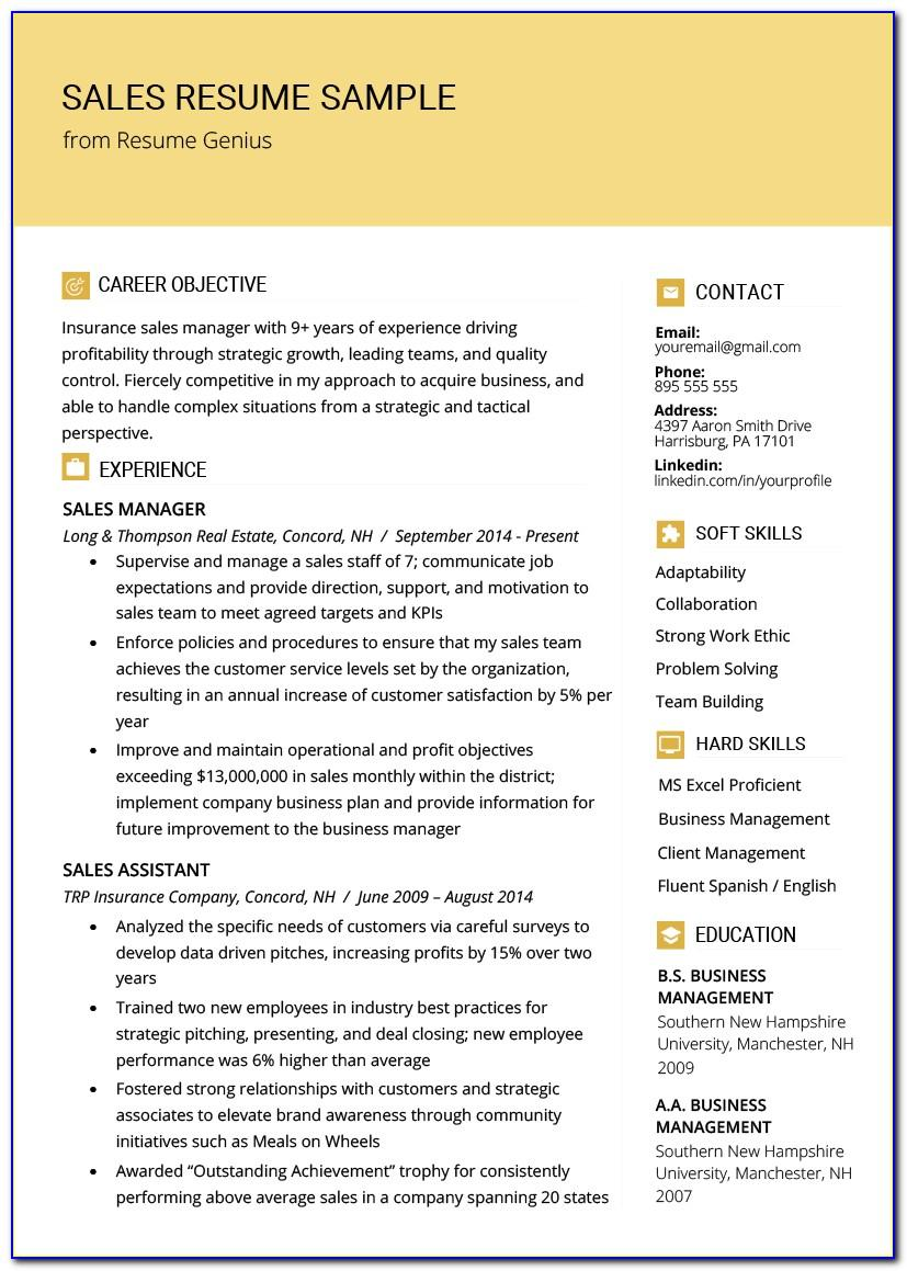 Sales Resume Template Word Free