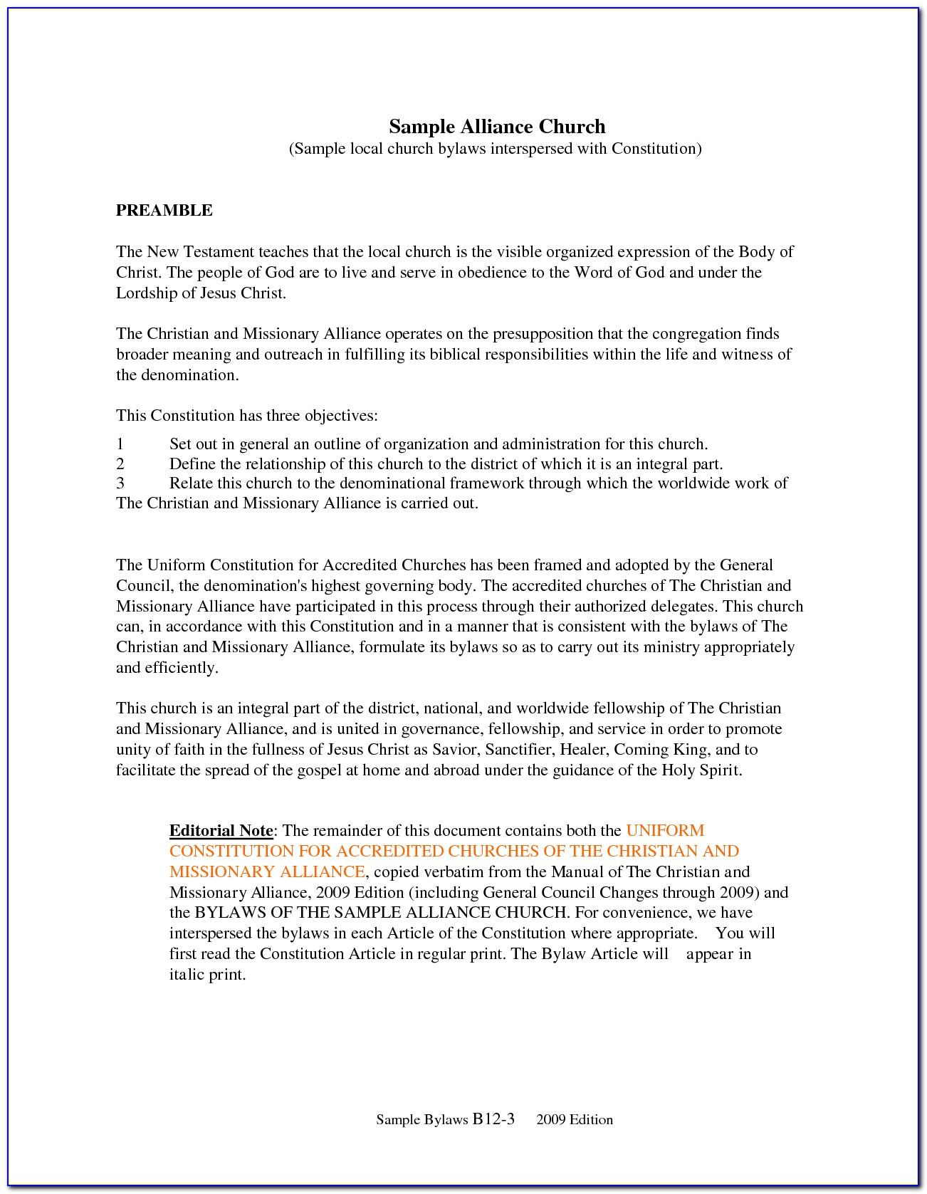 Sample Bylaws For Non Profit Organization In Florida