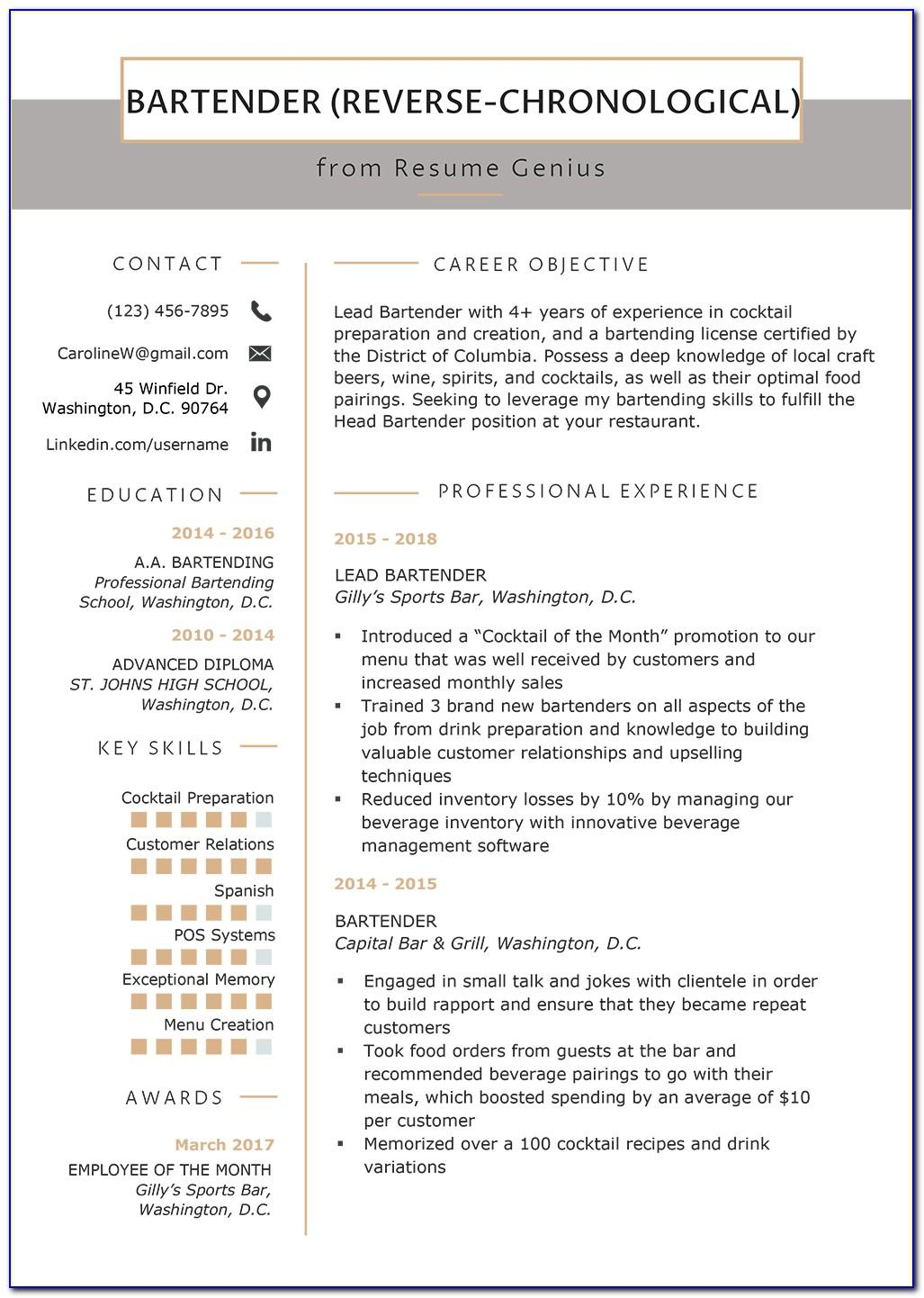 Sample Chronological Resume Template Word