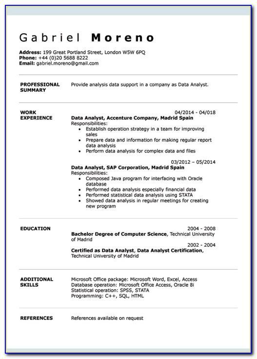 Sample Curriculum Vitae It Professional