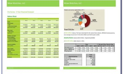 Sample Financial Projections Marketing Plan