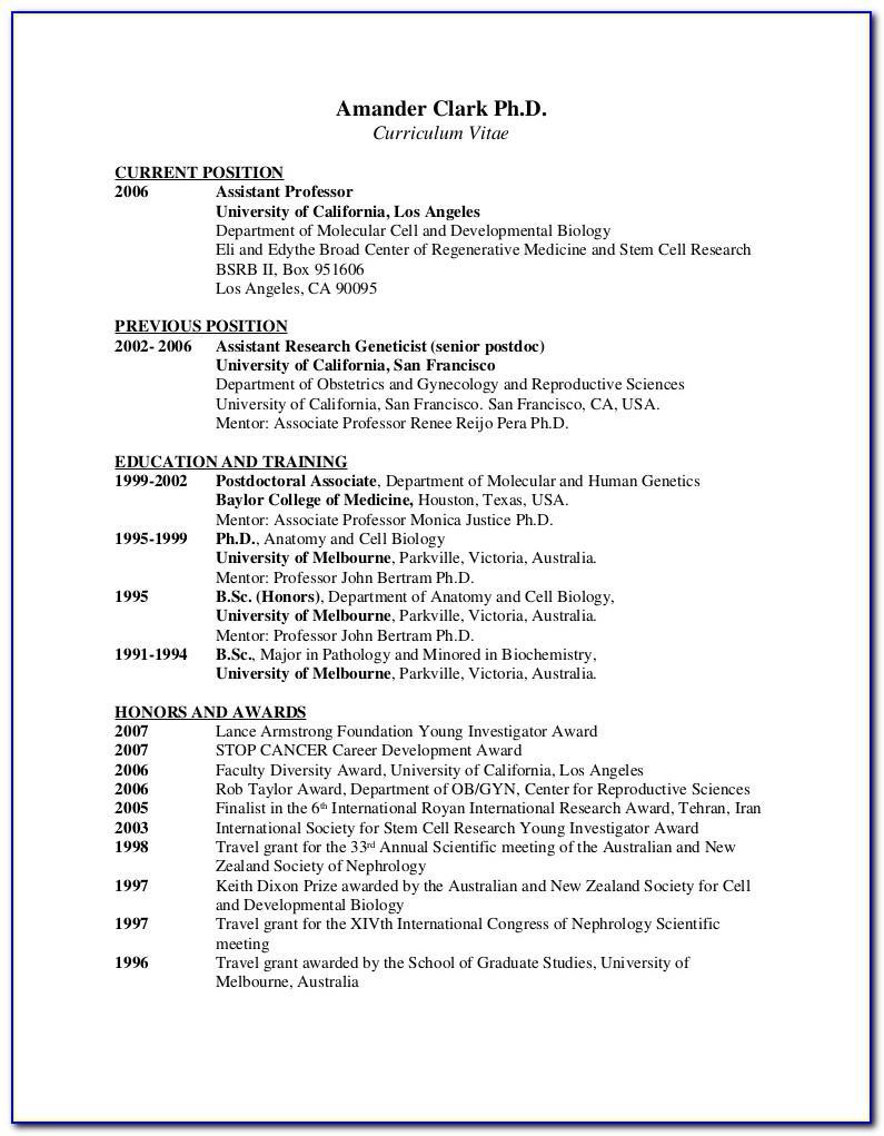 Sample For Curriculum Vitae Template