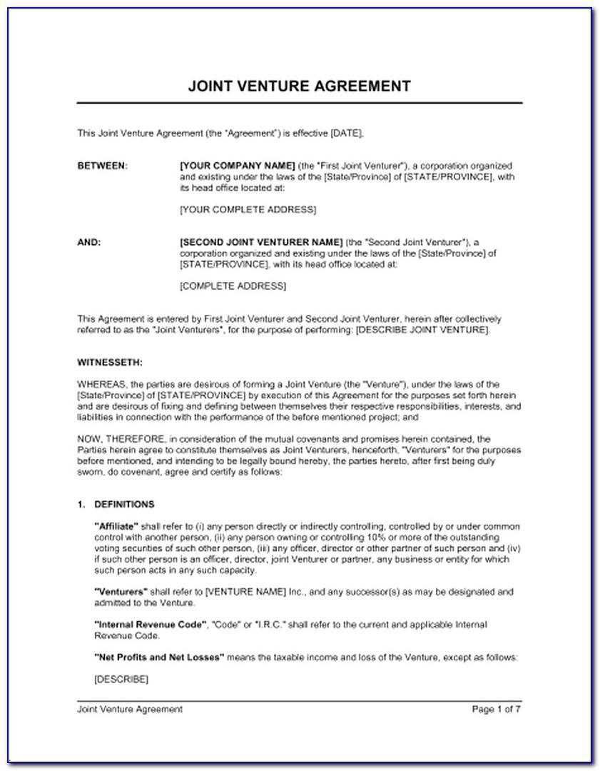 Sample Joint Venture Agreement Between Two Companies