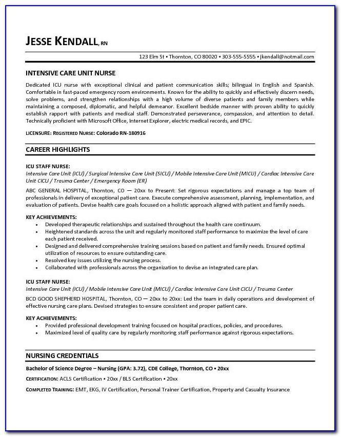 Sample Resume For Car Driver Position