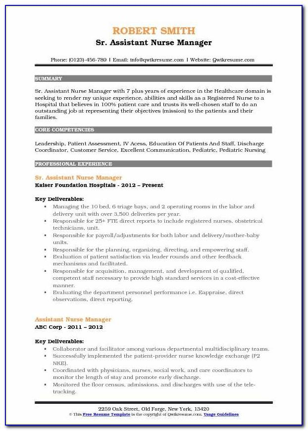 Sample Resume For Executive Driver Position