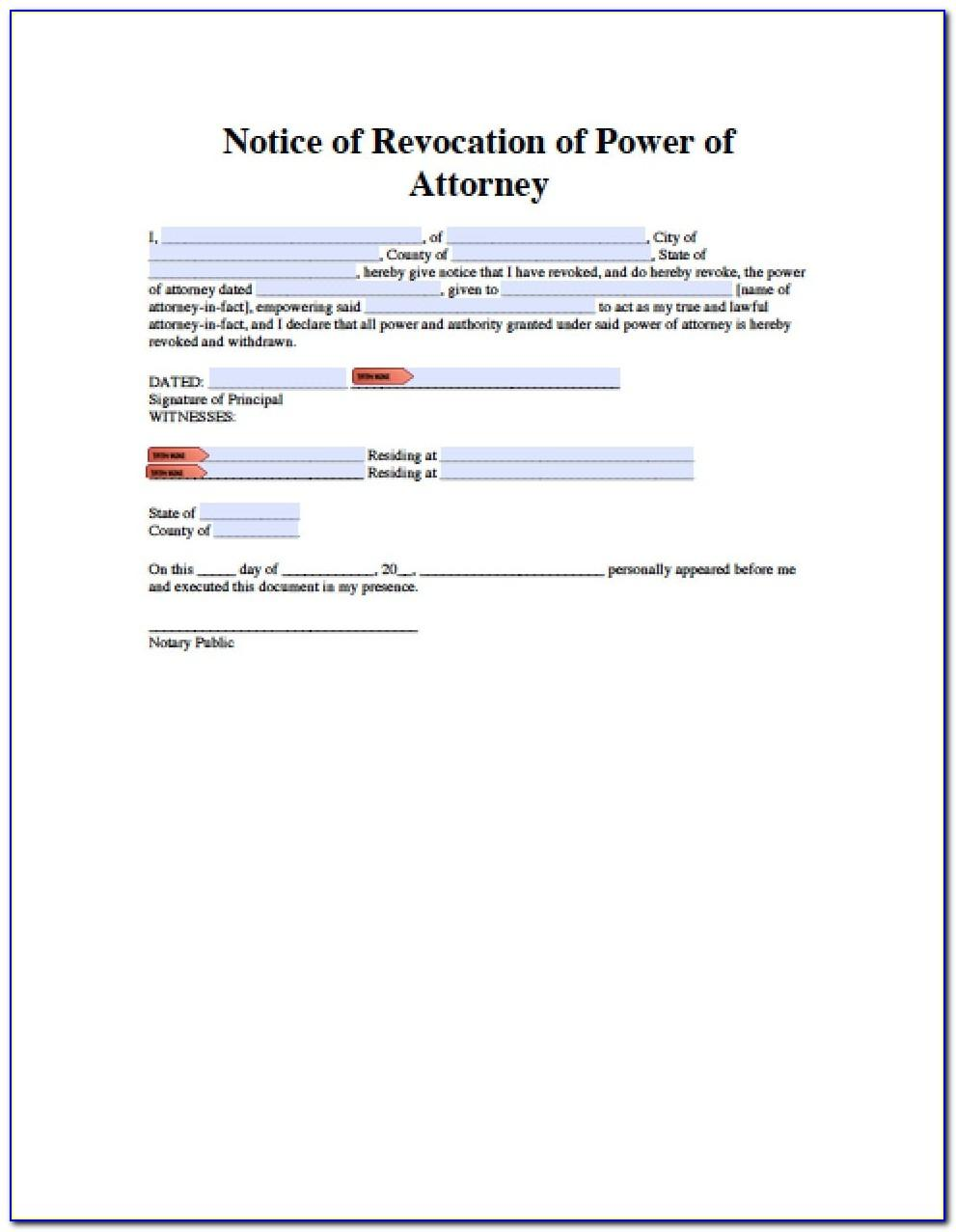 Special Power Of Attorney Sample Form India