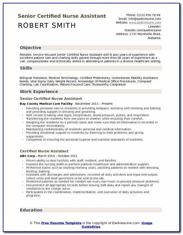 Best Resume Format For College Applications