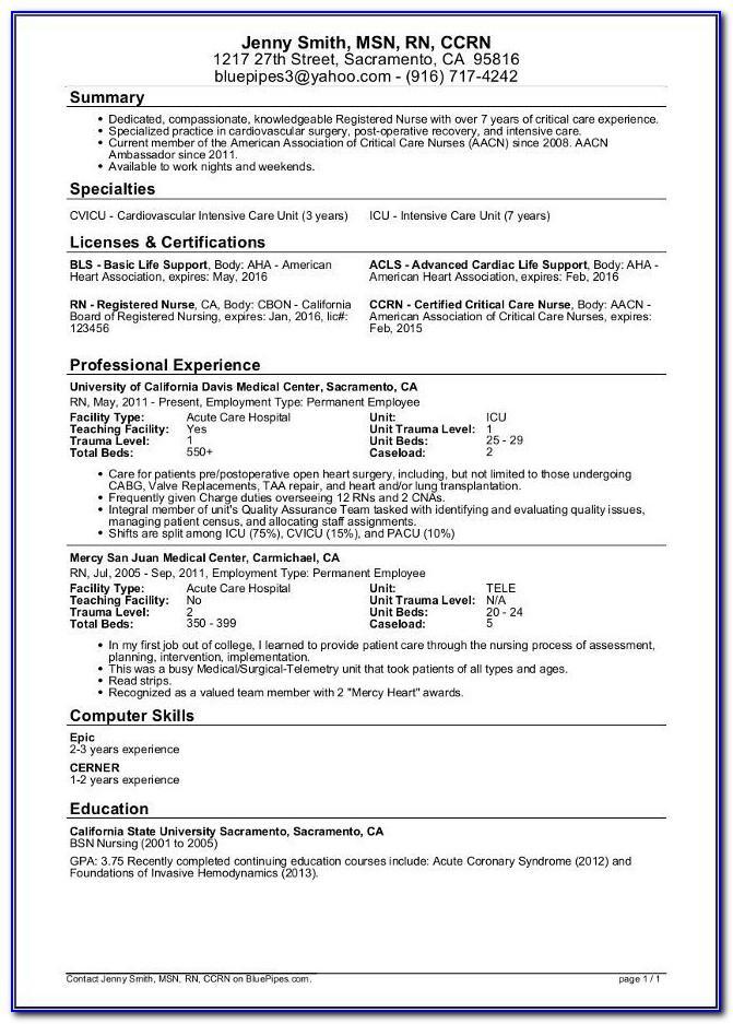 Best Resume Templates For Nurses