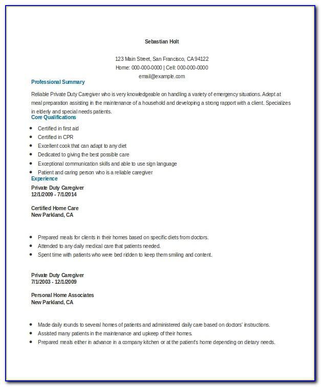 Curriculum Vitae Example Pdf Download