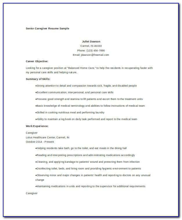 Cv Example With No Work Experience