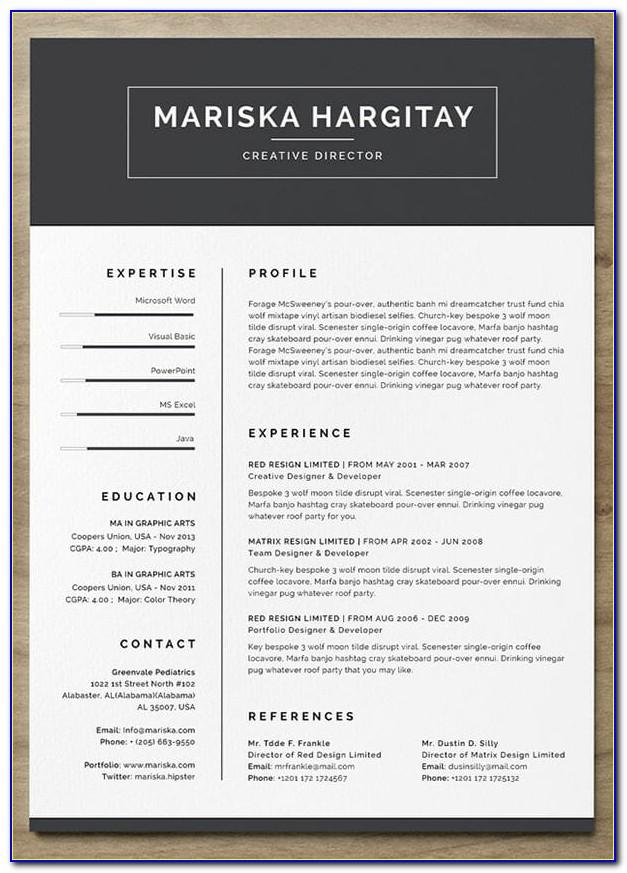 Free Cv Template With Photo Insert