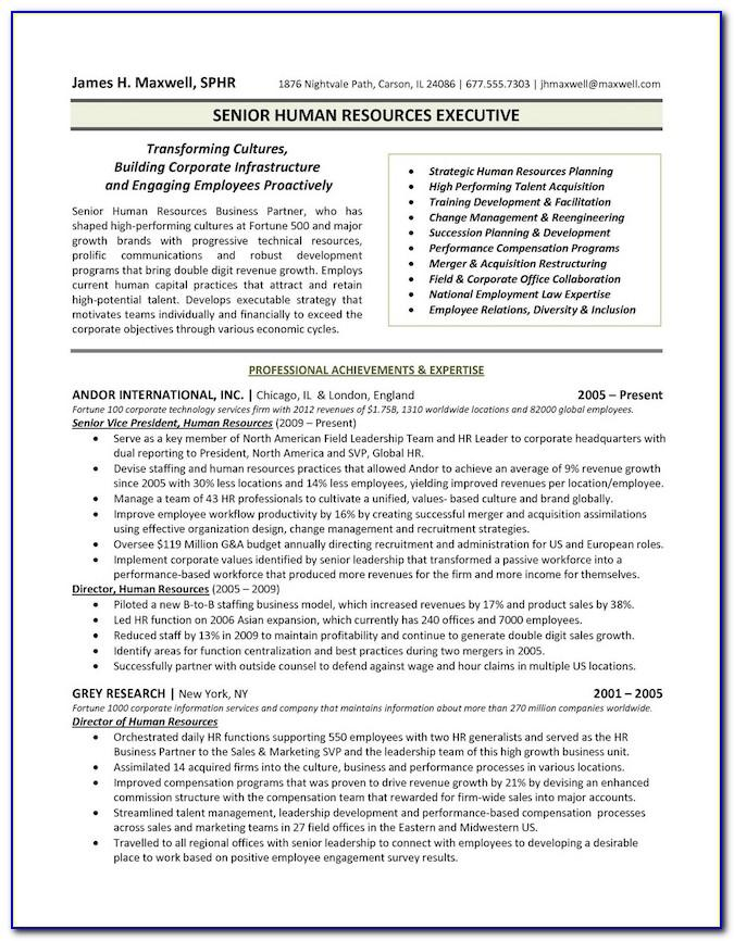 Free Resume Templates For Sales Manager