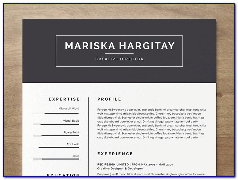 Indesign Resume Templates Free Download