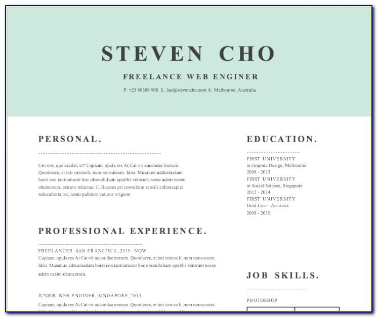 Infographic Resume Template Microsoft Word