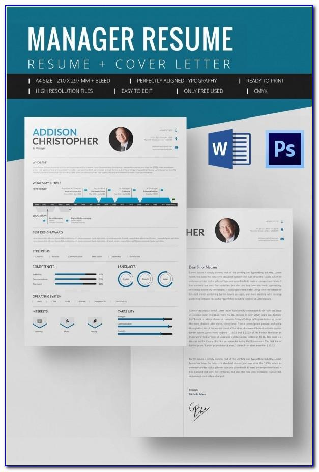 Infographic Resume Template Word Download