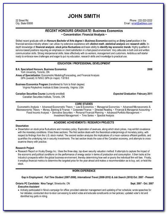 International Resume Format For Financial Analyst