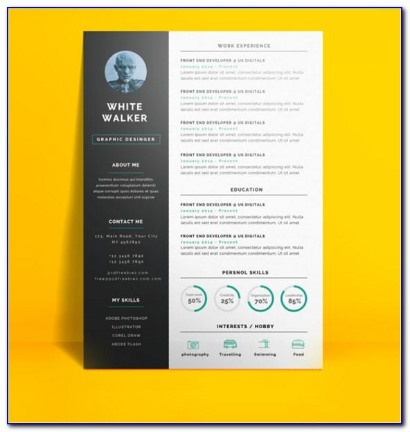 Professional Resume Template Microsoft Word Download