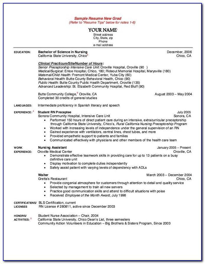 Recent Graduate Nursing Resume Examples