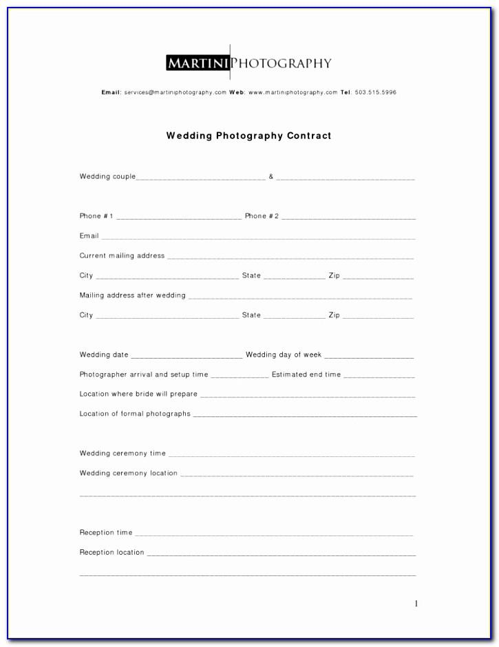 Record Label Agreement Template