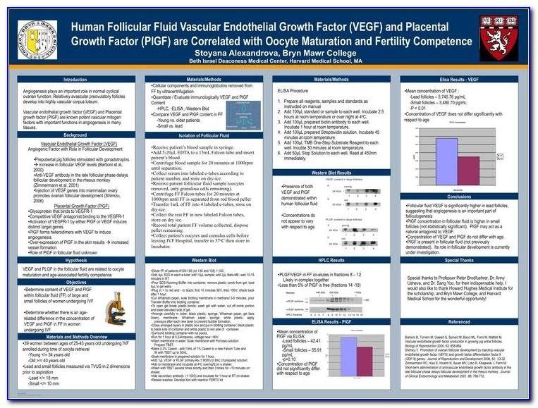 Research Poster Template Free Download A3
