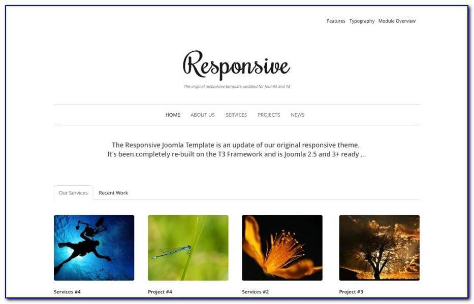 Responsive Muse Templates Free Download