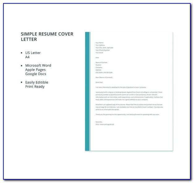 Resume Copy And Paste Templates