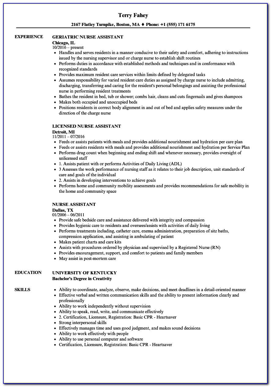 Resume Examples For Nursing Assistant Position