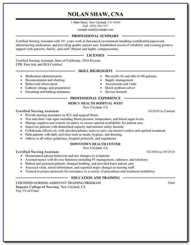 Resume Format Examples Free Download