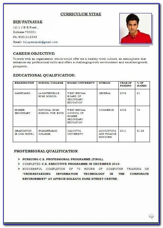 Resume Format For Mca Freshers Pdf Download