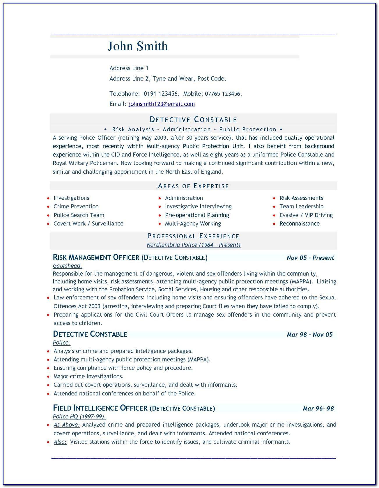 Resume Format For Word 2007
