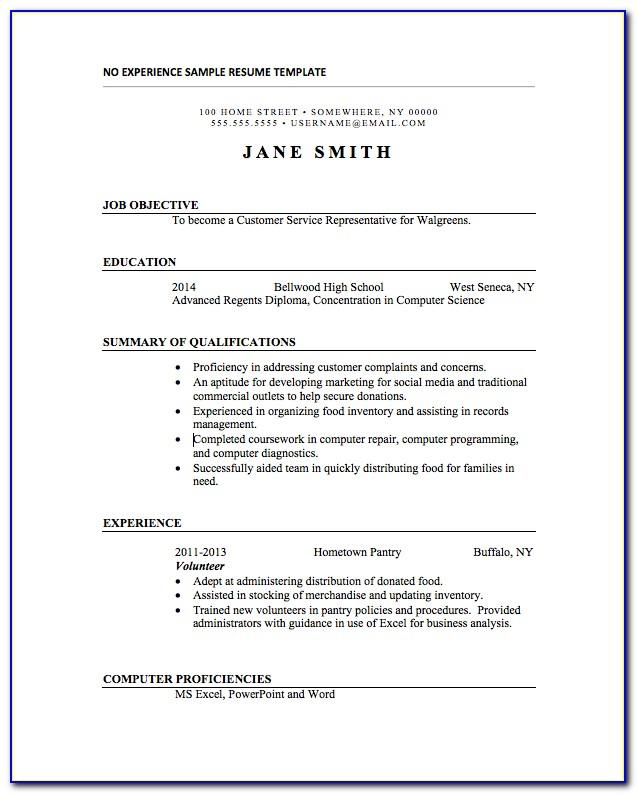 Resume No Experience Template