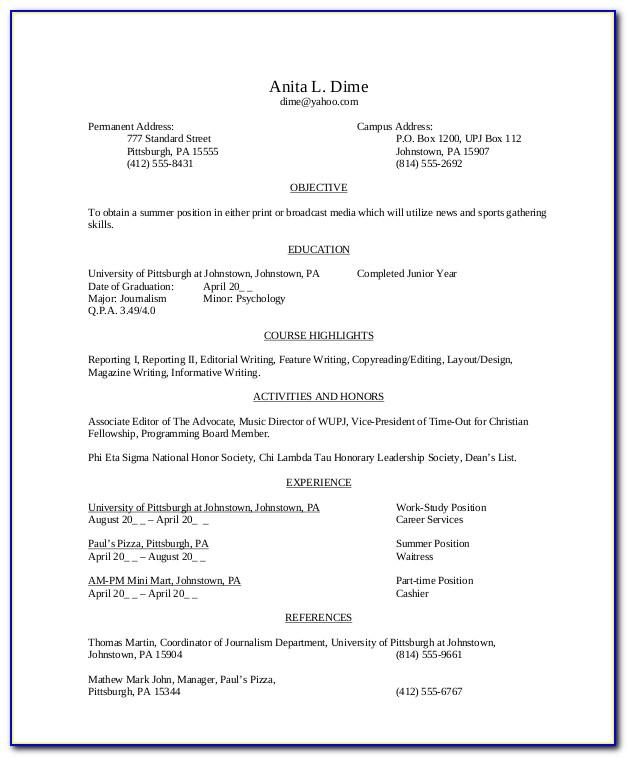 Resume Samples For Sales Manager Position