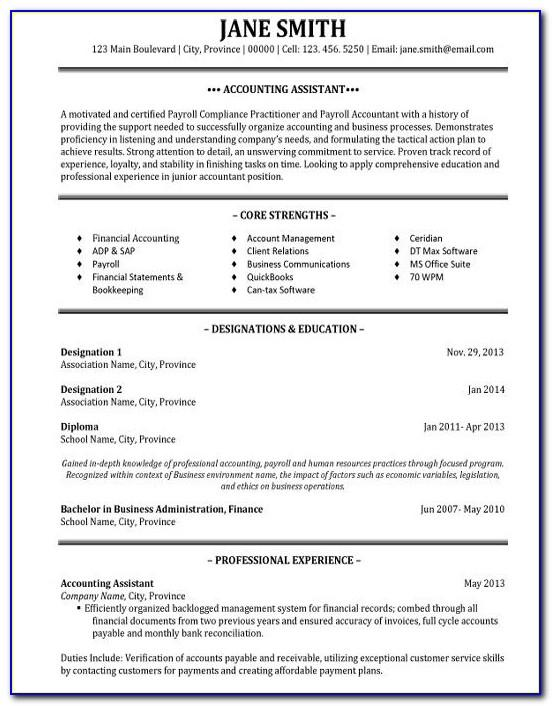 Resume Summary Examples For Project Managers