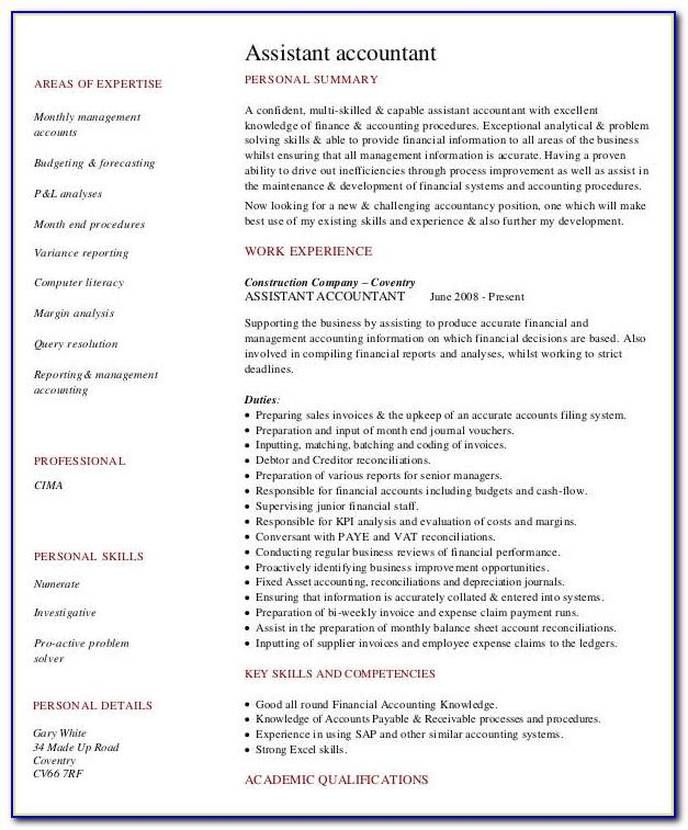 Resume Summary Statement Examples Project Manager