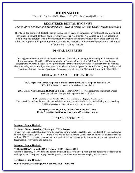 Resume Template Bartender No Experience
