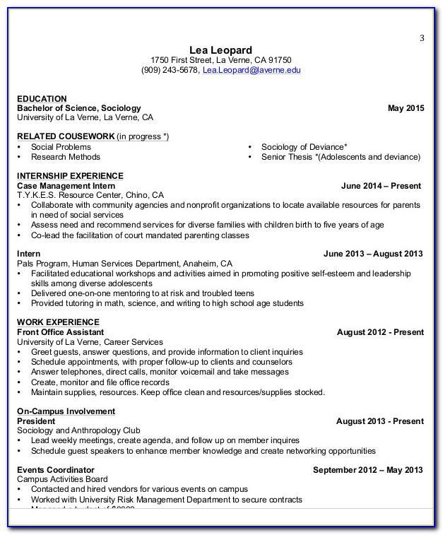 Resume Template Undergraduate Internship