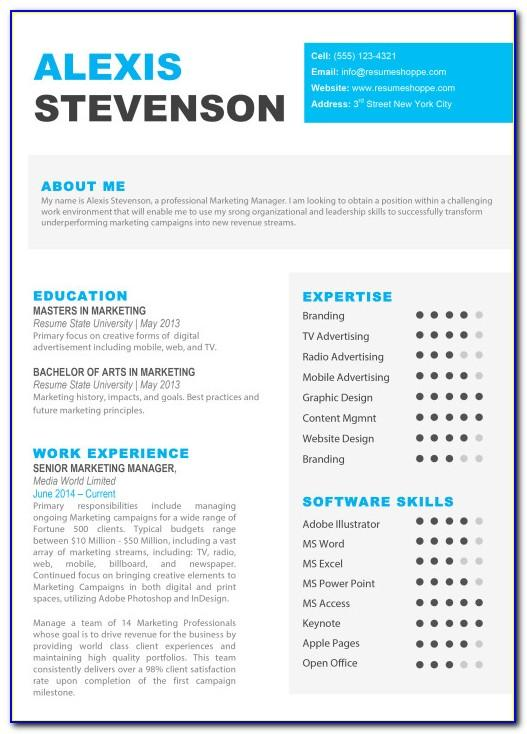 Resume Templates Free Microsoft Word 2010
