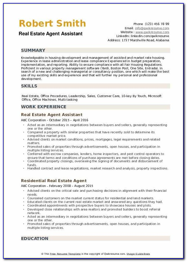 Commercial Real Estate Agent Resume Sample