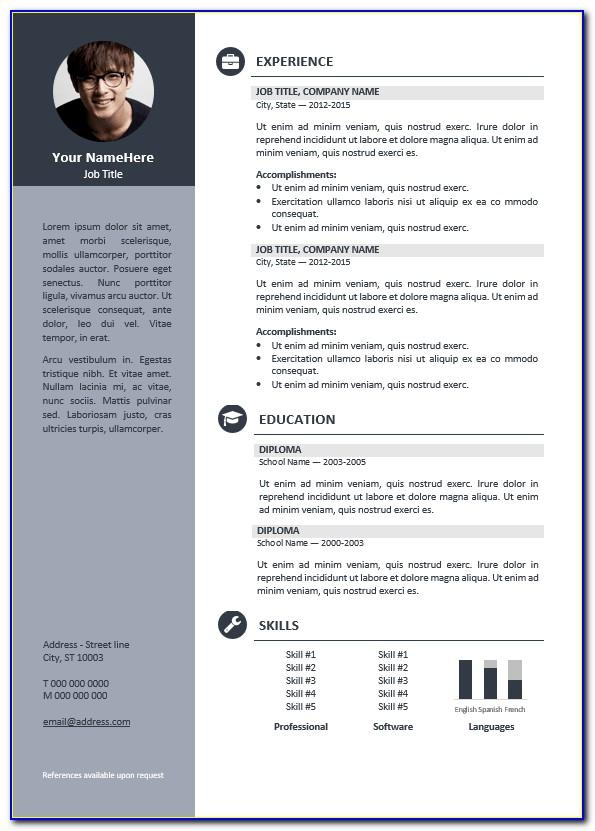 Creative Professional Resume Template Free Download