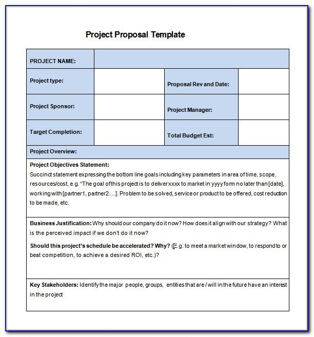 Daily Project Progress Report Template Excel