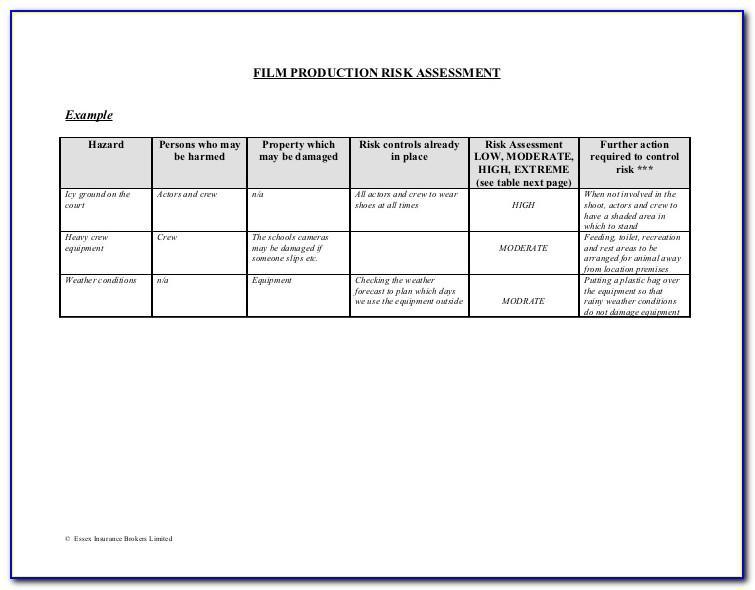 Film Production Risk Assessment Template