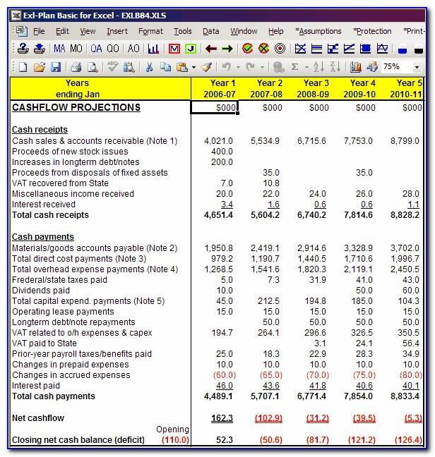 Pro Forma Cash Flow Projection Template