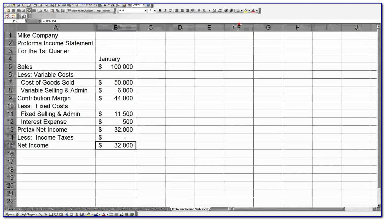 Pro Forma Financial Statement Format