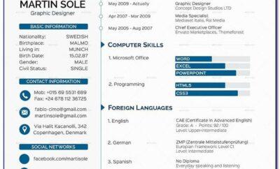Professional Curriculum Vitae Format Pdf