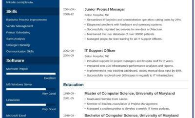 Professional Curriculum Vitae Template Free Download
